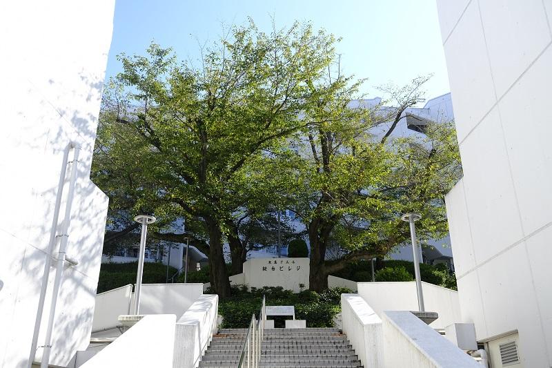 桜台ビレジの画像